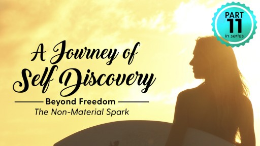 Science of Identity Foundation Releases Video on 'Beyond Freedom'